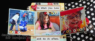 Amy Sheffer the good life album tri-fold open