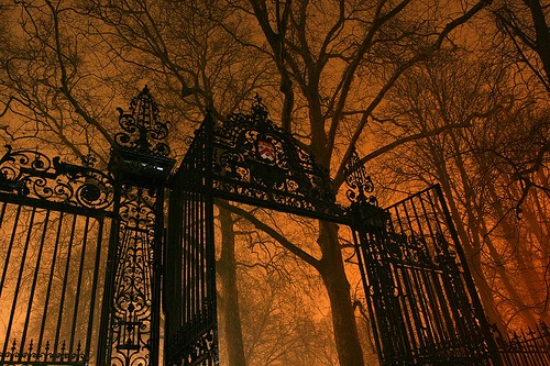 Spooky Halloween Gate - orange
