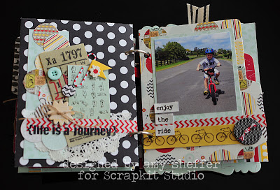 Amy Sheffer the good life album biking