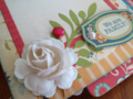 Chipboard Mini Albums - Family Traditions white rose closeup